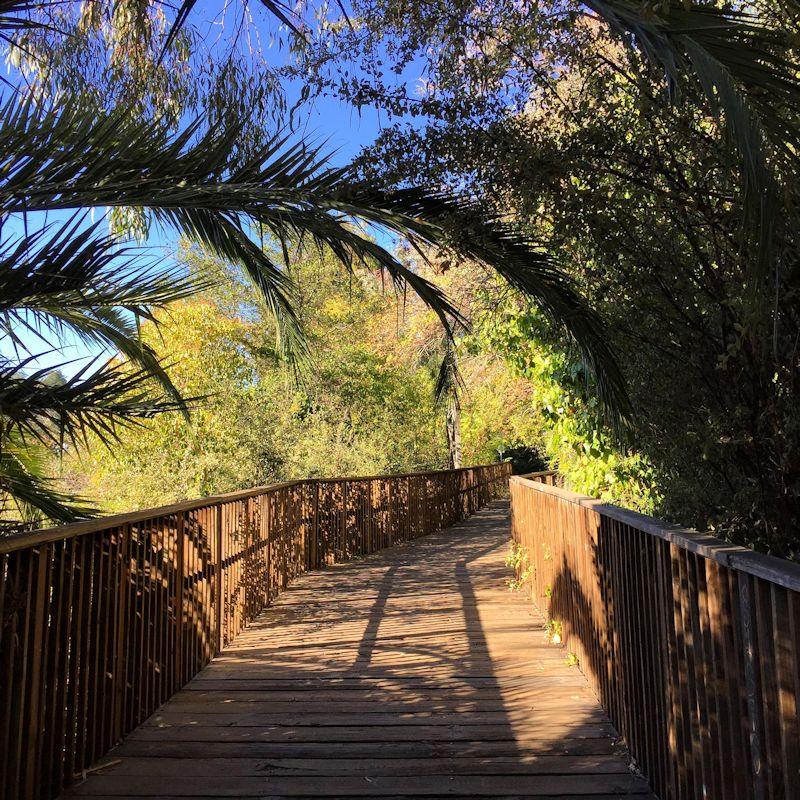Los-gatos-creek-trail-800