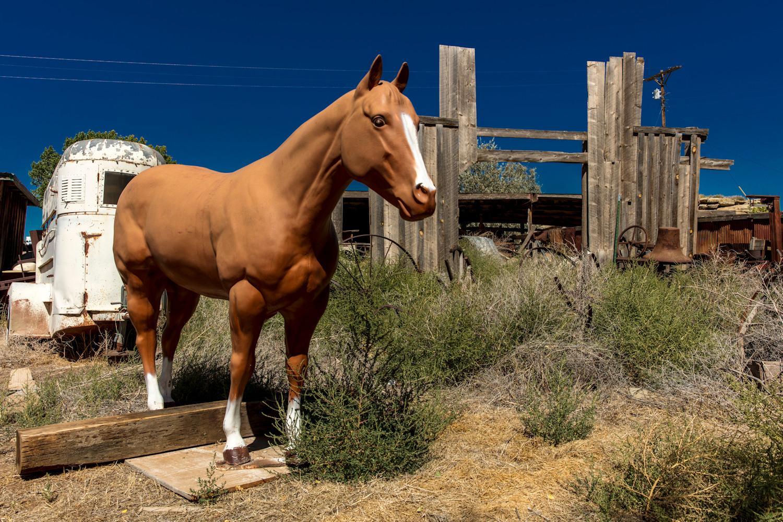 fake-horse-Cortez